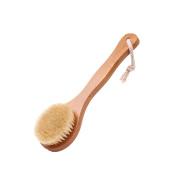 SEEKO Bristle Handle Round Bath Brush Exfoliating Massage Brush TFA650