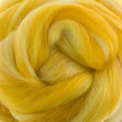 Extra Fine Merino Roving Sugar Candies 19 Micron Gillyflower One Ounce for Felting
