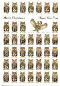 Festive Owls Boxed Embossed Christmas Cards