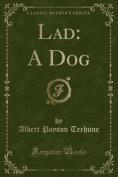 Lad: A Dog (Classic Reprint)
