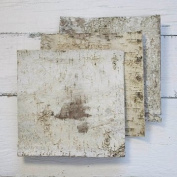 Natural Birch Bark Strips, 30cm x 30cm Square Wood Sheets, Set of 6