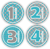 Baby Boy Monthly Stickers - Baby Stickers - Baby Shower Stickers