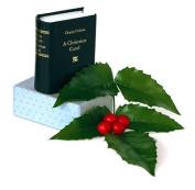 Christmas Carol Minibook