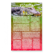 FLORIDA FUN FACTS postcard set of 20 identical postcards. US state trivia post card pack. Made in USA.