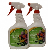 Crowning Glory - Two 950ml spray bottles