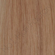 200 Pre-Bonded Nail Tip Remy Hair Extensions 24#