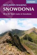 Mountain Walking in Snowdonia