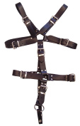 Rouge Garments One Size Black Master Harness