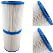 Filbur FC2387 Antimicrobial Replacement Filter Cartridge for Rainbow DSF 50 Pool and Spa Filter