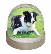 Border Collie Dog Snow Dome Globe Waterball Gift