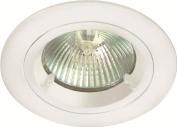 12V White Fixed Lock Ring Downlight