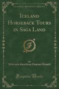 Iceland Horseback Tours in Saga Land