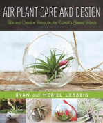 Air Plant Care and Design