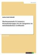 Wachstumsmarkt E-Commerce. Herausforderungen Bei Der Integration Im Mittelstandischen Grosshandel [GER]