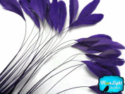 Moonlight Feather, Coque Feathers - Eggplant Stripped Coque Tail Feathers - 1 Dozen
