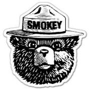 Smokey the Bear Firefighting WILDFIRE sticker 10cm x 10cm