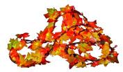 Sylvania Fall Colour Lighted Leaf Garland Clear 2.7m