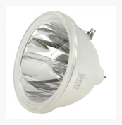 Mitsubishi 915P026010 Bare DLP Lamp (Bulb Only) 6,000 Hour Life & 1 Year Warranty