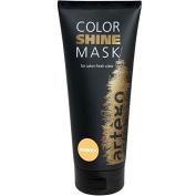 Artego Colour Shine Mask