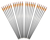 80cm Outdoor Target Practise Archery Carbon Fibre Arrows with Changeable Tips for Compound Bow or Recurve Bow