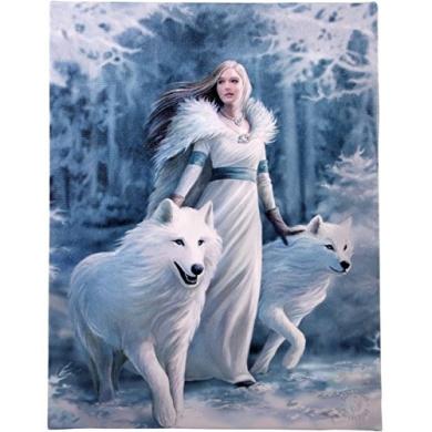 Fantastic Anne Stokes Design Winter Guardian Canvas/Wall Plaque