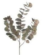 Artificial Eucalyptus Cinerea branch (length