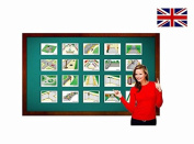 City and Traffic Flashcards - English Vocabulary Cards
