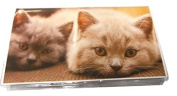 ADDRESS BOOK CATS Kittens with 30 Page Notepad Custom Thick Cover