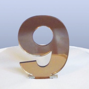 Number 9 Cake Topper Bronze Acrylic Mirror