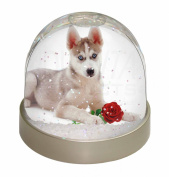 Siberian Husky with Red Rose Snow Dome Globe Waterball Gift