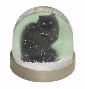 Black Persian Cat Snow Dome Globe Waterball Gift