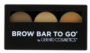 Brow Bar to Go, Brush on Brow - Gerard Cosmetics/Whitening Lightning, Medium to Ebony