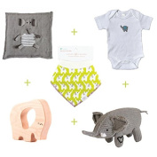 Gifts That Give Back - Save the Elephants Huge Gift Basket