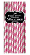 Striped Paper Straws 24 Count