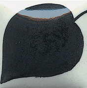 Duncan E-Z Stroke Translucent Underglazes - EZ 012 - Cobalt Jet Black - 30ml Jar