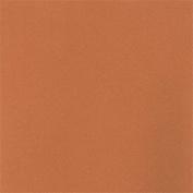LaCarte Peach Pastel Paper Pack of Five - 50cm . X 60cm .