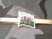 Welsh Flag Tie Clip
