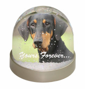 """Doberman Pinscher Dog """"Yours Forever..."""" Snow Dome Globe Waterball Gift"""