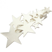 Blogger Fav Shooting Star Bridal Hair Pin Clip Cuff Wrap Claw Snap Head Barrette