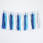 Tissue Paper Tassel Party Garland (20 Tassels Per Package) - 36cm Long Tassels