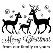 Gourmet Rubber Stamps Cling Stamps 8.3cm x 17cm -Merry Christmas From Our Family To Yours