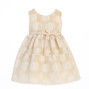 Sweet Kids Baby Girls Champagne Flower Embroidered Special Occasion Dress 6-24M