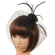 Clearbridal Women's Black Tulle Feather Blusher Fascinator Mini Hat Wedding Bridal Birdcage Veil 18057