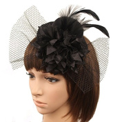 Clearbridal Women's Black Party Cocktail Bridal Wedding Feather Fascinator Mini Hat Headwear 18055