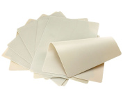 New 10x Double Side Tattoo Practise Skin Sheet Blank Plain 20cmx15cm