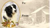Border Collie Dog No. 1. Design Christmas Labels (42) - Self Adhesive