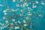 Almond Blossom, San Remy, 1890 Fine Art Poster Print by Vincent van Gogh, 92x61 cm