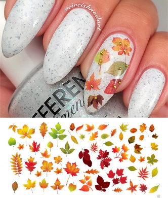Autumn - Fall Leaves Water Slide Nail Art Decals Set #2 - Salon Quality 14cm X 7.6cm Sheet!