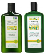 Andalou Naturals Sunflower and Citrus Brilliant Shine Shampoo and Conditioner Bundle With Fruit Stem Cell Serum, Vitamin E, Acai, Goji Berry and Rosehips, Sulphate Free and Colour Safe, 240ml each