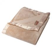 Trend Lab Paddington Bear Embossed Velour Baby Blanket, Brown